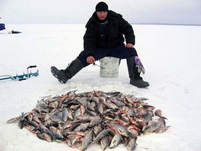 Рыбалка для новичка