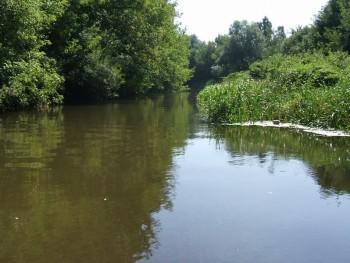 Поиск места ловли в разных водоемах