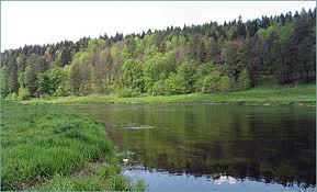 головль в реке