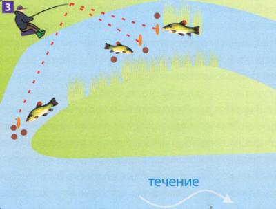 Ловля линя в реке