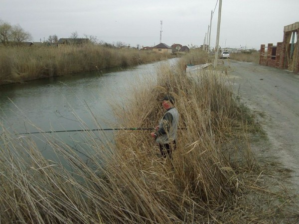 Ловля плотвы в канале