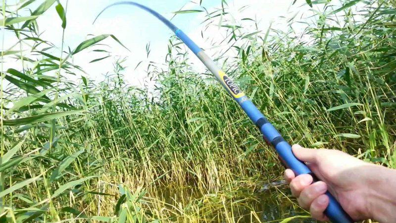 Поплавочная ловля в зарослях травы