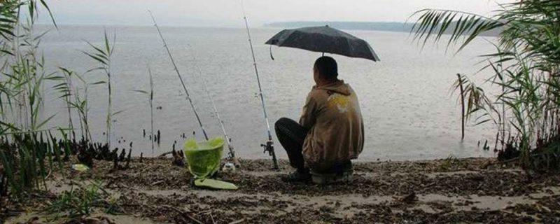 Погодные факторы, влияющие на улов рыбы