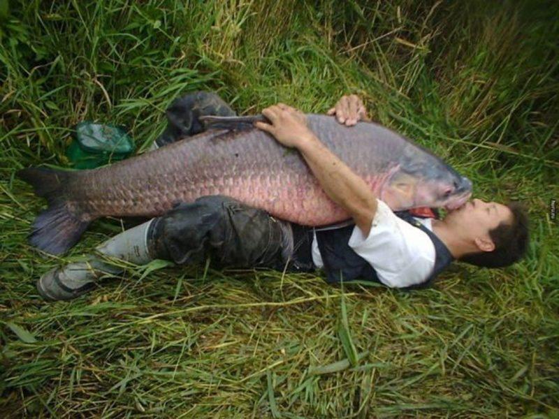 Уважение к рыбе, история