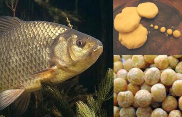 Рецепт приготовления теста на карася - основа удачной рыбалки