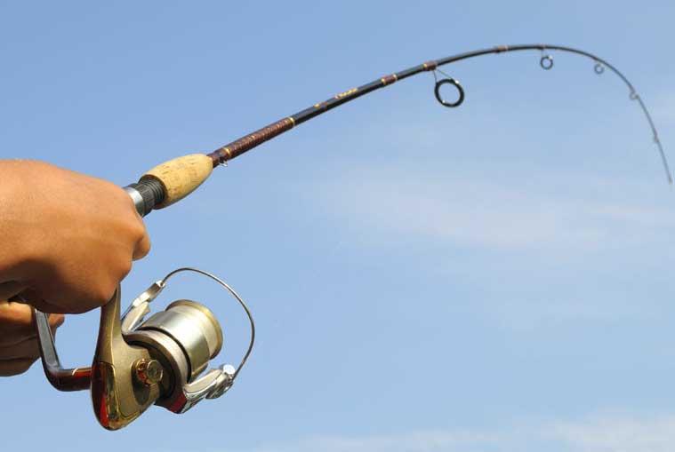 Правильный выбор удочки для летней рыбалки