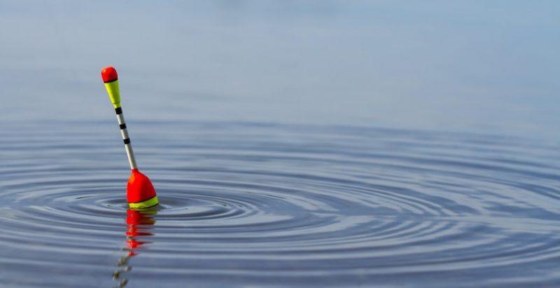 Где и что можно ловить на поплавочную удочку в октябре