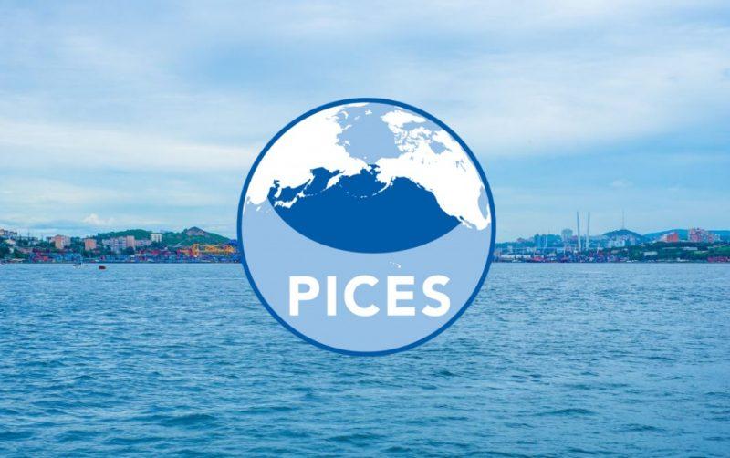 Чего ожидать обитателям северной части Тихого океана?
