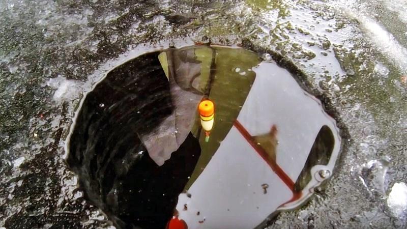 Как выбрать поплавок для зимней рыбалки. 7 важных правил