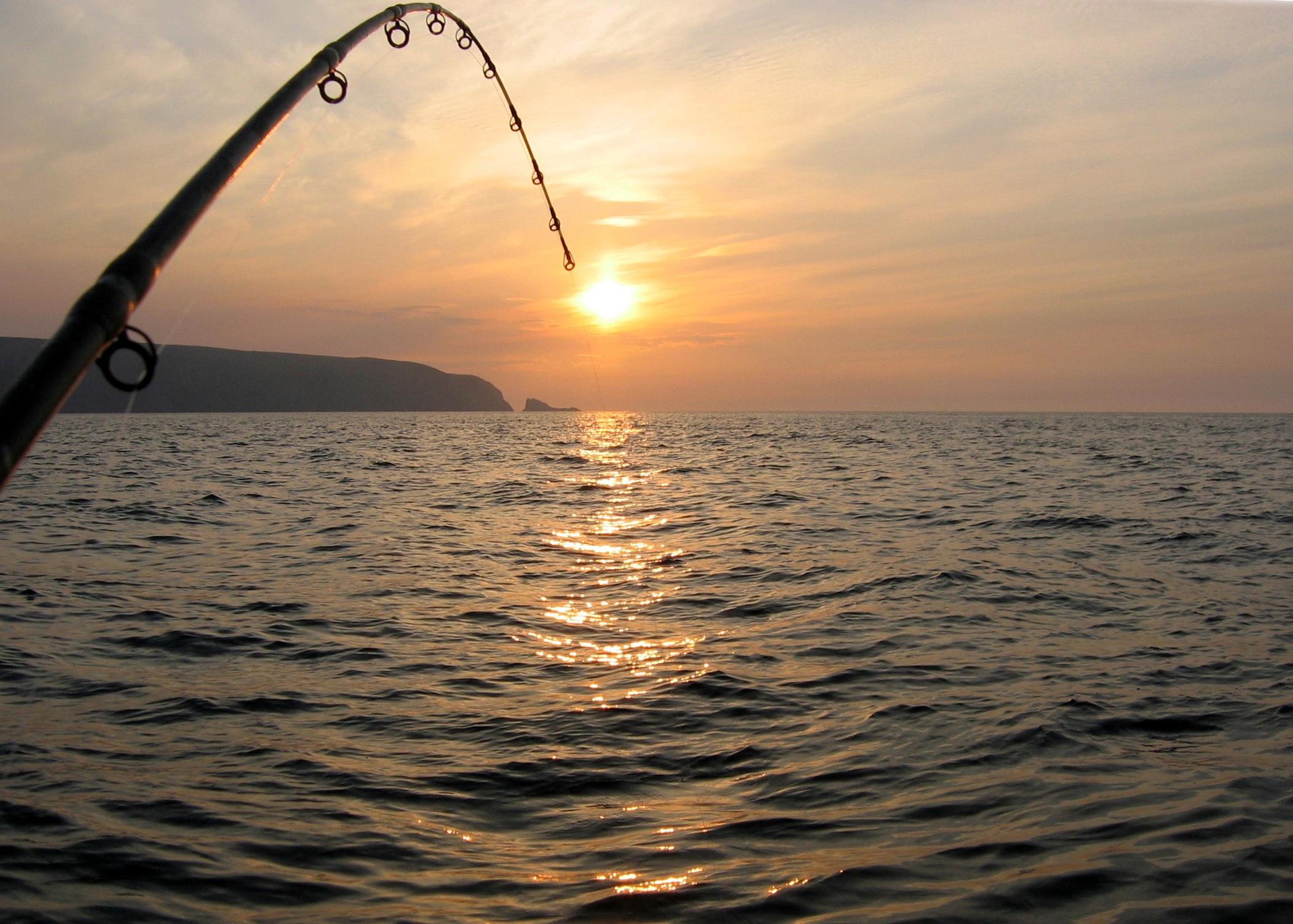 Ловля хищной рыбы дрифтингом