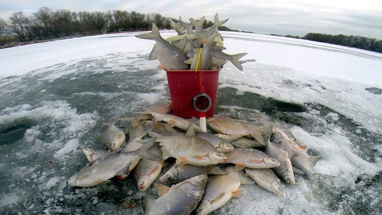 Особенности рыбалки в феврале
