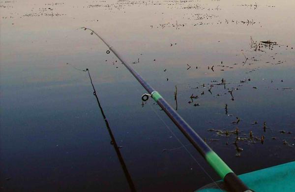 Летняя мормышка в стоячей воде, особенности успешной рыбалки