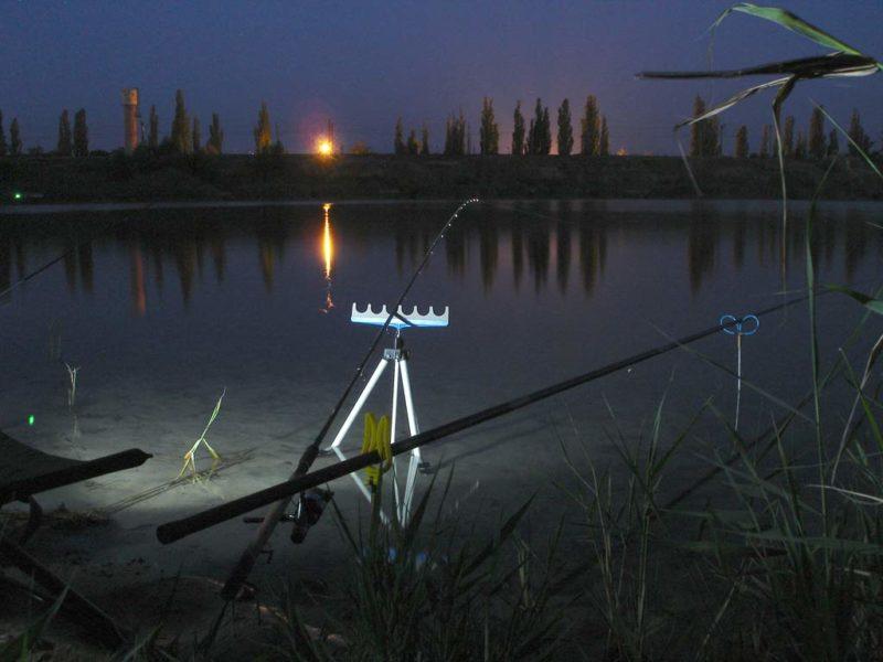 Ловля сазана ночью. Выбор места и подготовка к ужению