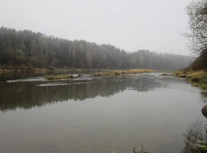 Поиск хищника в затопленном русле реки осенью