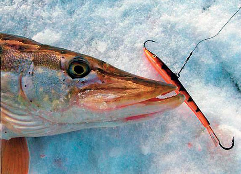 Зимняя рыбалка на балансир