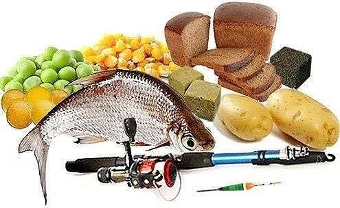Десять лучших комбинированных насадок для мирной рыбы