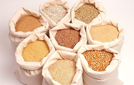 Пшеница и перловка в качестве наживки
