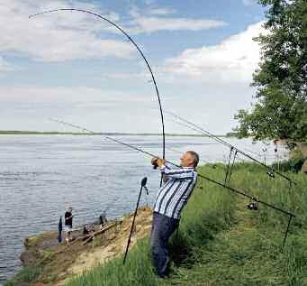 Правильная подсечка, вываживание и взятие рыбы в подсачек