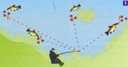 Ловля линя в озере