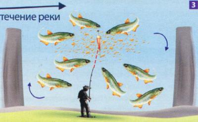Ловля уклейки в реке