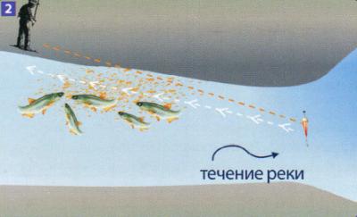 озерная уклейка