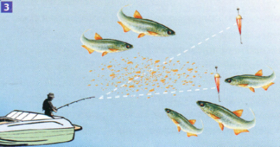 Ловля уклейки в озере