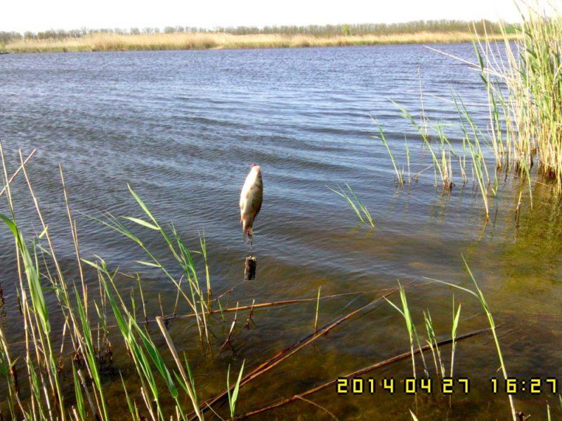 Рыбалка на реке Челбас