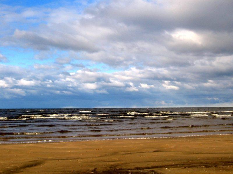 Нарвский залив