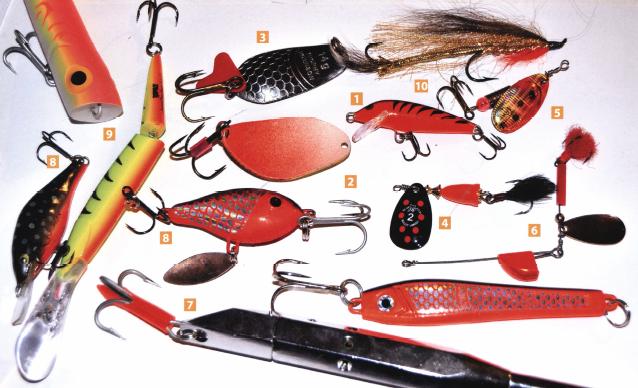 Рыбы любят красный цвет