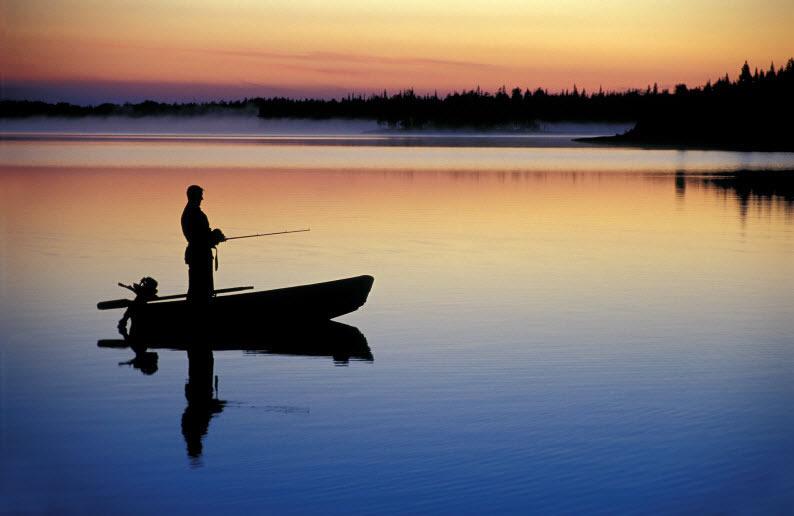 Тепловой режим озер и поведение рыб