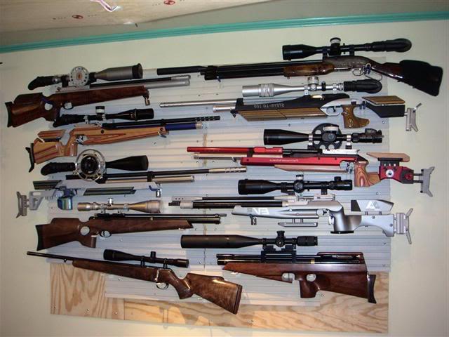 Как выбрать пневматическую винтовку для охоты?