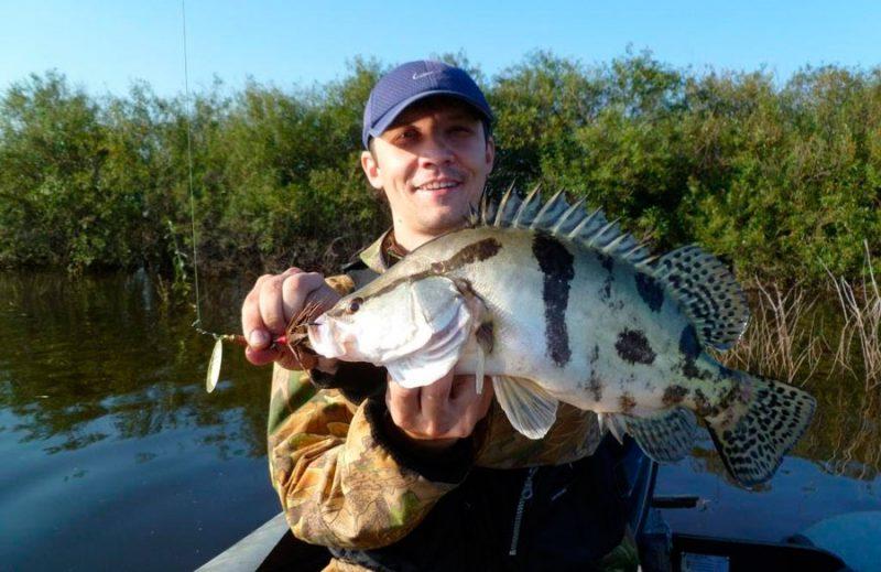Особенности ловли рыбы на реке Амур