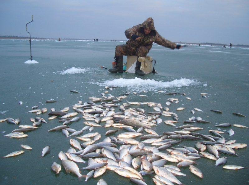 Как выбрать уловистое место для зимней рыбалки