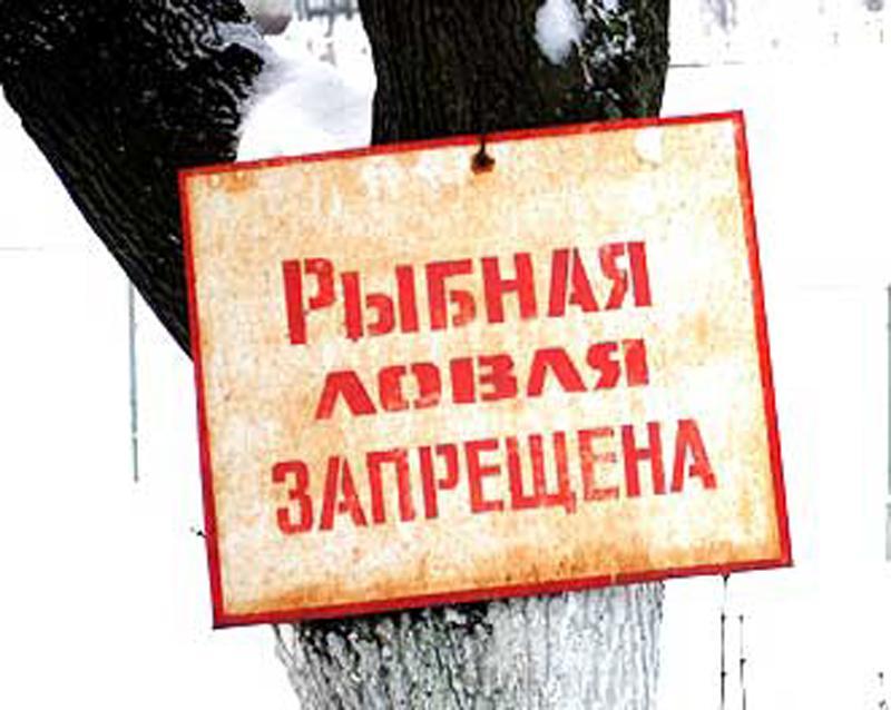 Запреты на ловлю рыбы