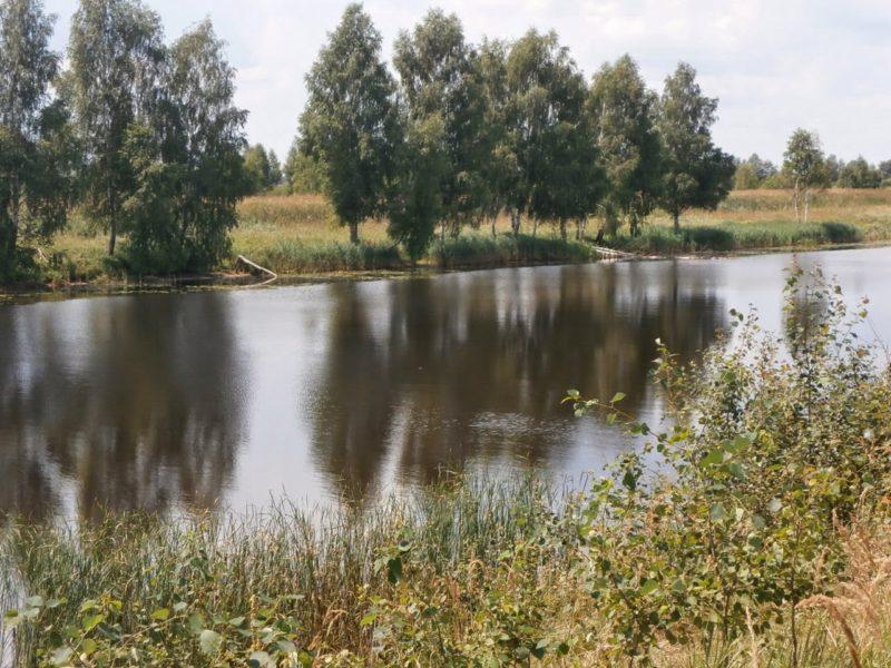 Почему ранней весной стоит искать рыбу на обводных каналах рыбхозов