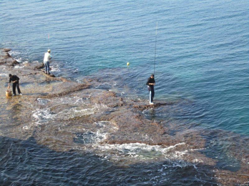 Прикорм и наживка, использующиеся на морской рыбалке