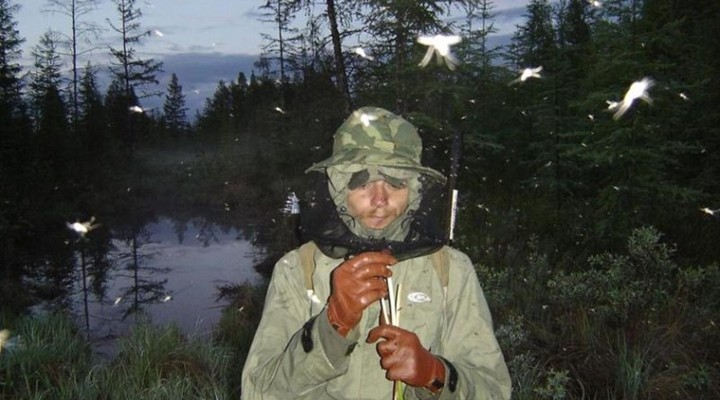 Как на рыбалке защититься от комаров