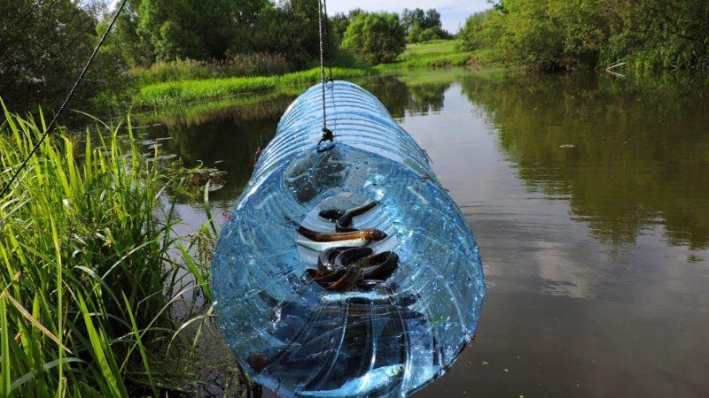 6 нестандартных способов как поймать рыбу без снастей