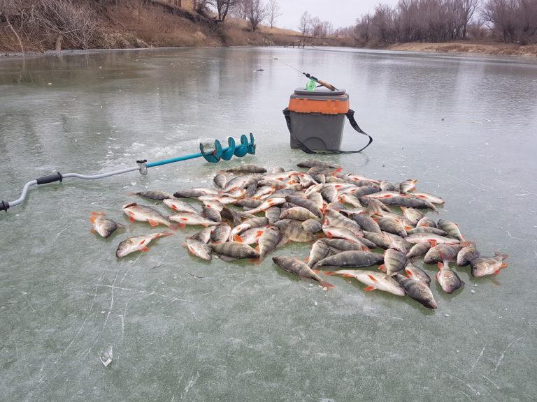 Секреты рыбалки по первому льду