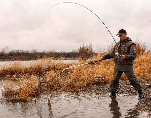 Осенняя рыбалка на хищную рыбу. Советы и секреты