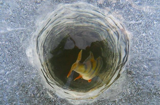Как замедлить процесс замерзания лунки