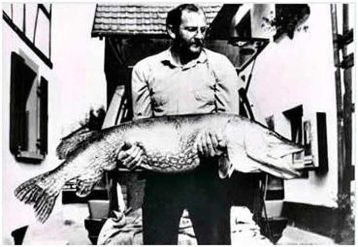 Ловись, рыбка! 6 самых крупных уловов в истории