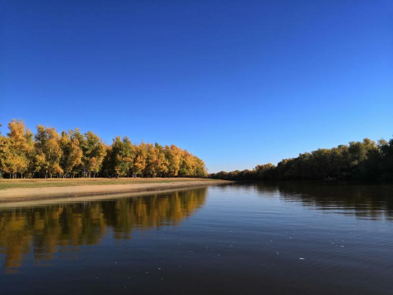 Могучая Ахтуба. Рыбалка на большой реке