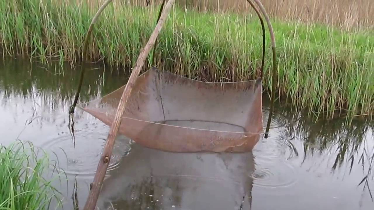 Ловля рыбы Пауком