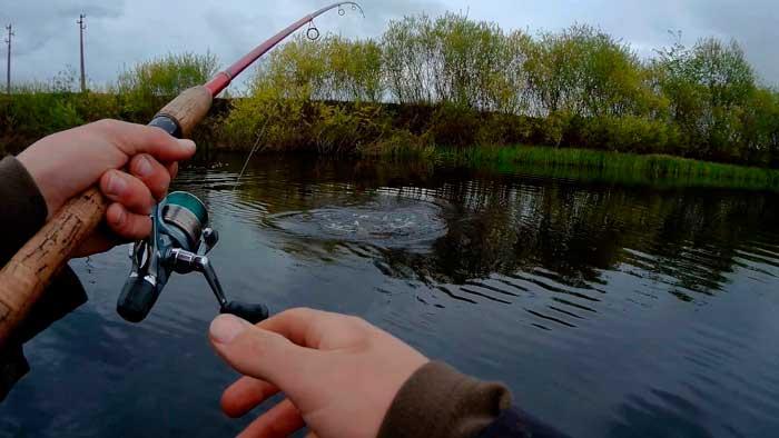 Рыбалка в мае на спиннинг