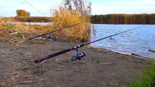 Что делать, если владелец пляжа прогоняет с рыбалки? Имеет ли на это право?