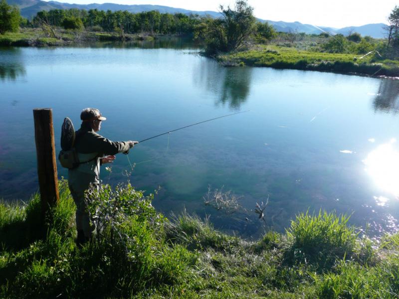 Эффективная рыбалка. Ловим язя и голавля на «тюкалку»