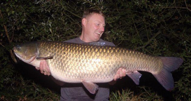 Белый амур. Ночная рыбалка