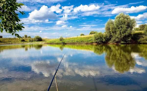 12 лучших рыболовных мест Курской области
