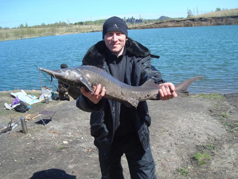 12 лучших мест для рыбалки в Кемеровской области